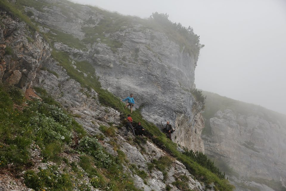 la-pelle-dell-orso-nebbia-dolomiti-veneto-italy-movie-walks