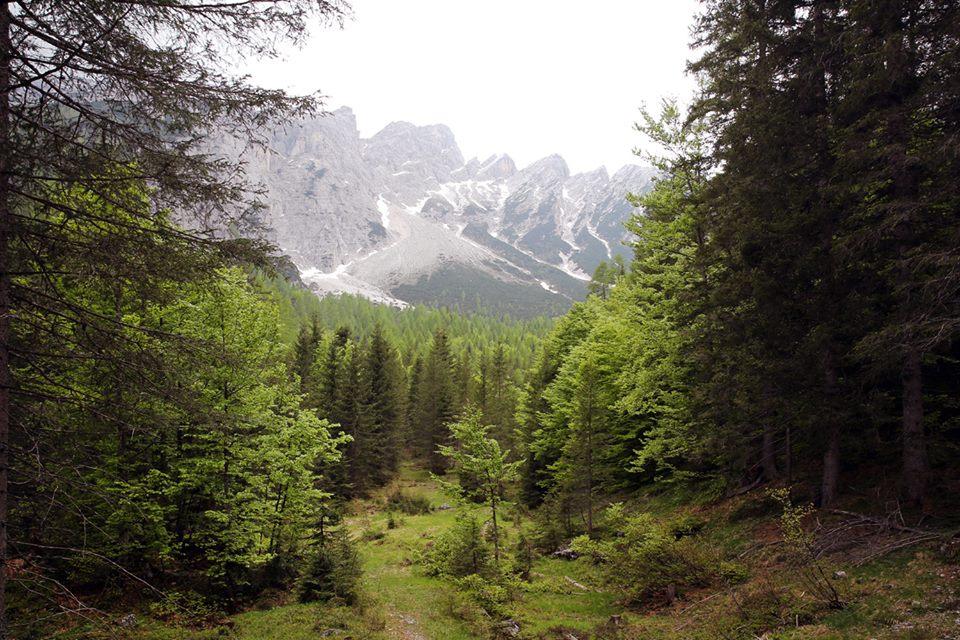 sentieri-dolomiti-la-pelle-dell-orso-italy-movie-walks