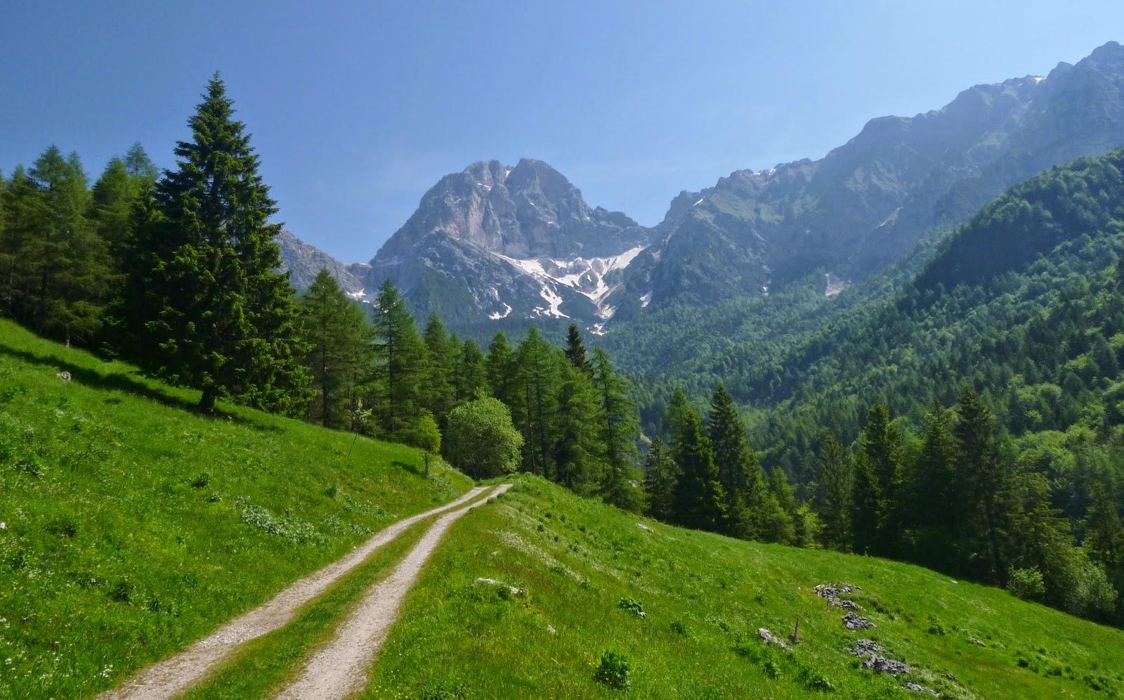 sentiero-val-zemola-veneto-italy-movie-walks