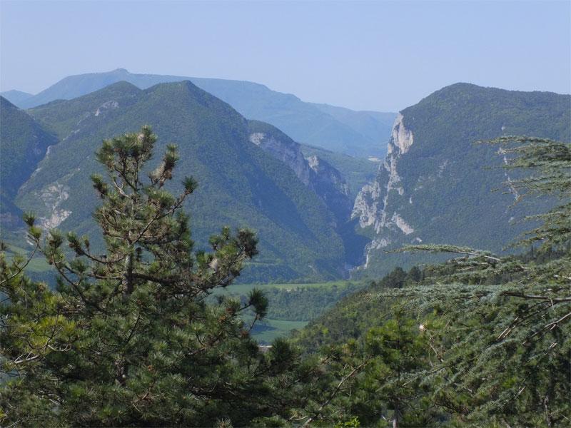 monti delle Cesane